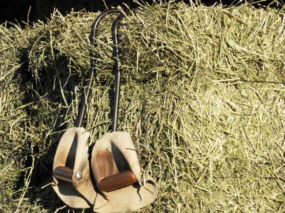 Quality hay, all with test results