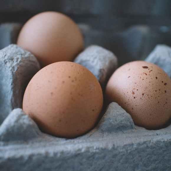 Fresh & Organic Eggs