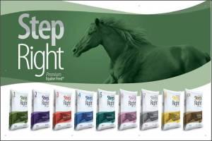 STEP HORSE FEED